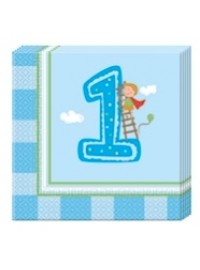 Boy's First Birthday Napkins (20)