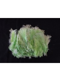 Feathers 10cm - Green (20)