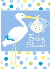 Stork Boy Invitations (8)