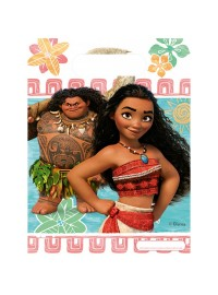 Moana Party Bags (6)