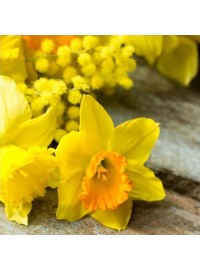 Daffodil on Wooden Table Napkins (20)
