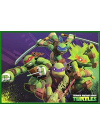 Ninja Turtles Meal Box / Bucket Sticker