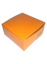 Orange Square Party Box