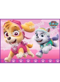 Pink Paw Patrol Meal Box / Bucket Sticker