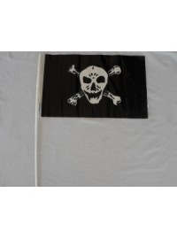 Skull Flag - Plastic on stick
